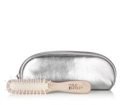 Handbag Brush and Case