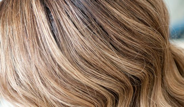 The Healthy Hair Regime