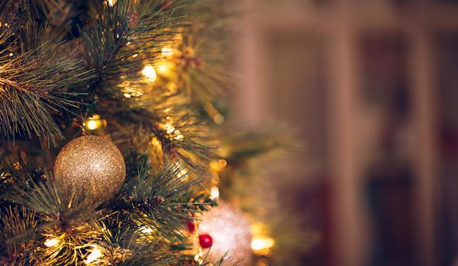 Christmas Gifting with Philip Kingsley